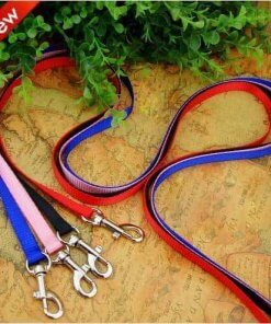 Dog Leash / Lead - Small - Choice of 4 Colours