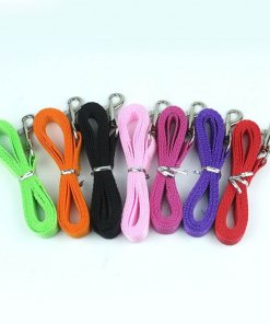 Dog Leash / Lead - Small - Choice of 6 Colours