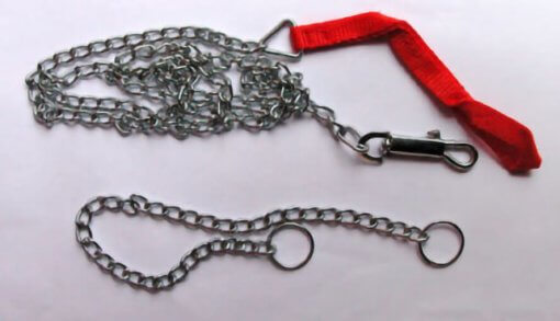 Chain Dog Collar and Lead Set