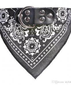 Cute Dog/Cat Collar with Paisley Bandana - Black - Large