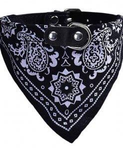 Cute Dog/Cat Collar with Paisley Bandana - Black - Medium