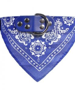Cute Dog/Cat Collar with Paisley Bandana - Blue - Large