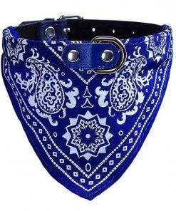 Cute Dog/Cat Collar with Paisley Bandana - Blue - Medium