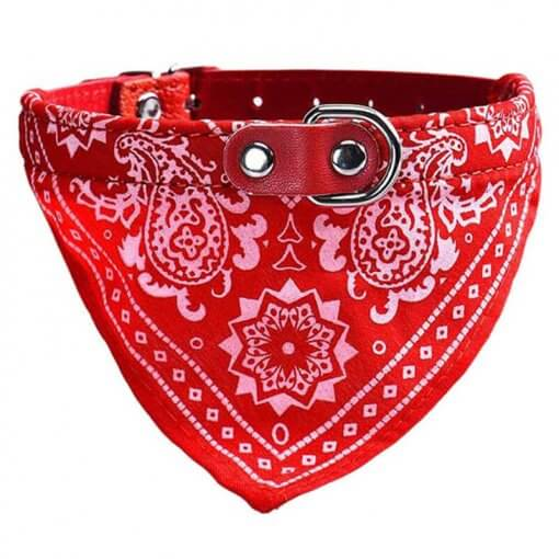 Cute Dog/Cat Collar with Paisley Bandana - Red - Medium