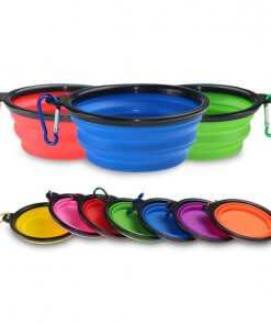Portable Collapsible Dog Bowl with Carabiner