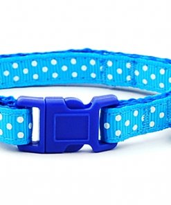 Printed Collar and Leash Set