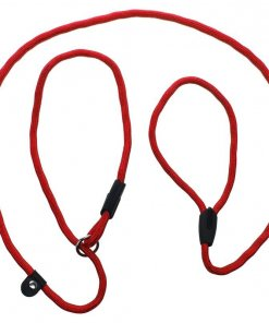 Slip Rope Leash for Walking Training