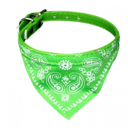 Cute Dog/Cat Collar with Paisley Bandana - Green - Small